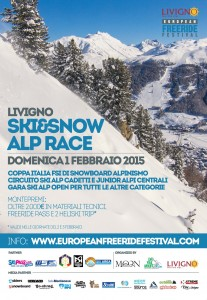 ski_snow_alp_33x48_web
